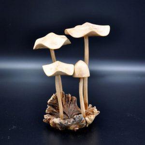 4-champignons-sculptes