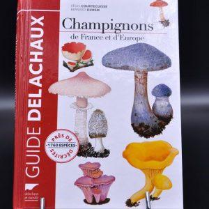 champignons-de-france-et-deurope