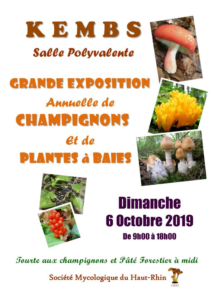 Affiche Expo Kembs 2019