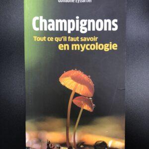 Champignons - Tout ce qu'il faut savoir en mycologie